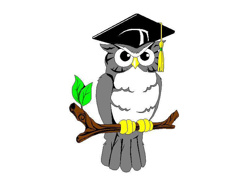Рисунок совы в шляпе магистра