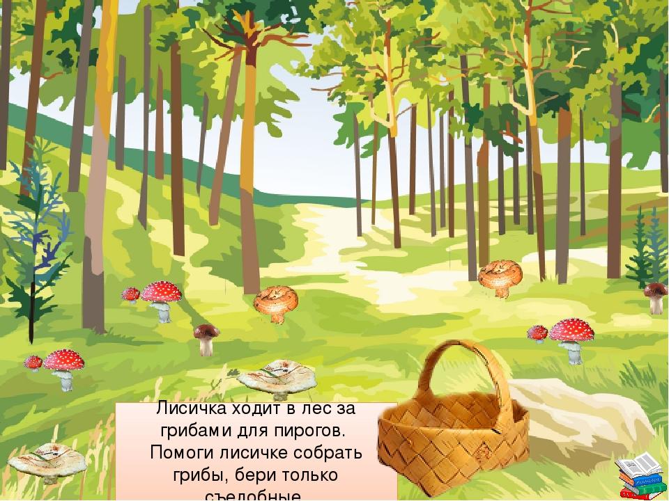 Лисичка ходит в лес за грибами для пирогов. Помоги лисичке собрать грибы, бе...