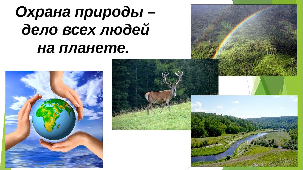 Картинки природа средней полосы россии красивые того