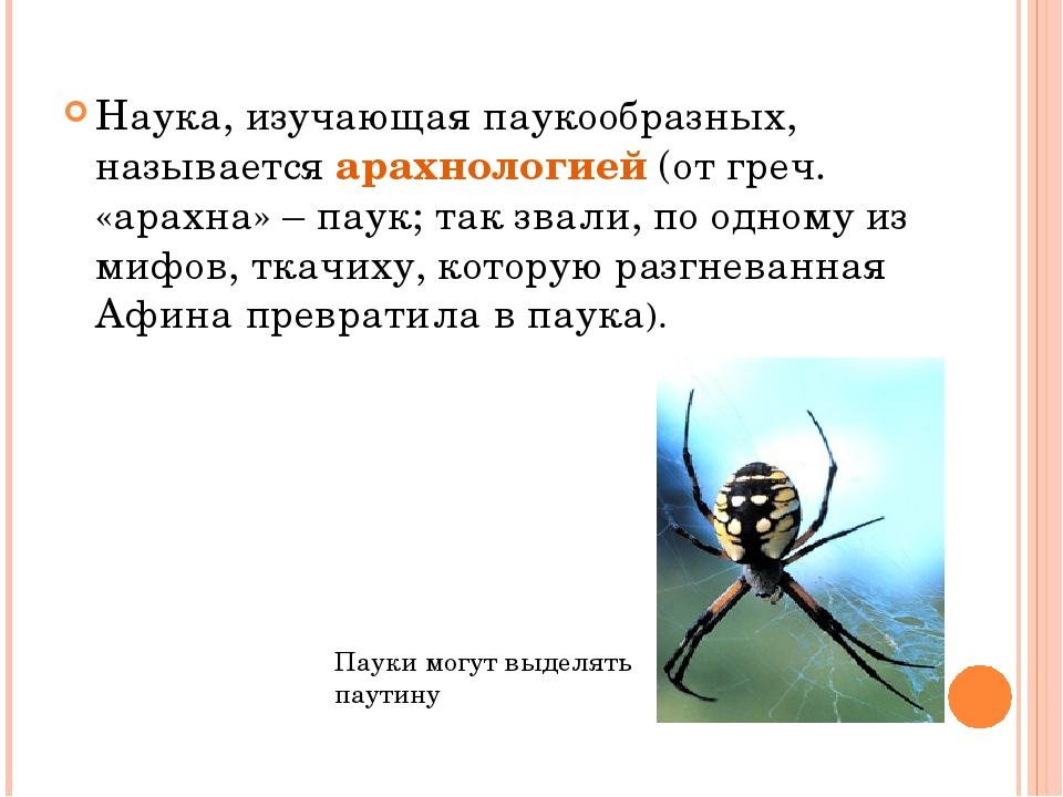 Наука, изучающая паукообразных, называется арахнологией (от греч. «арахна» –...