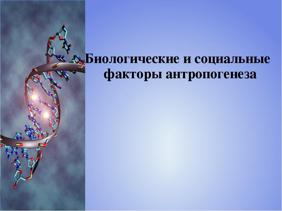 Биологические и социальные факторы антропогенеза