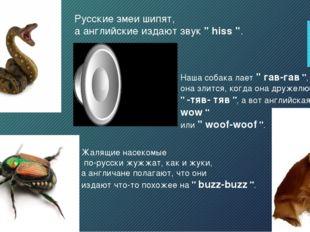 """Русские змеи шипят, а английские издают звук """" hiss """". Жалящие насекомые по-р"""