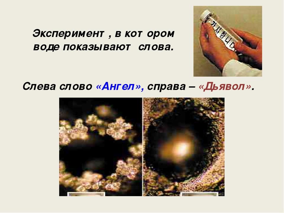Эксперимент, в котором воде показывают слова. Слева слово «Ангел», справа – «...