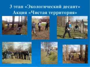 3 этап «Экологический десант» Акция «Чистая территория»