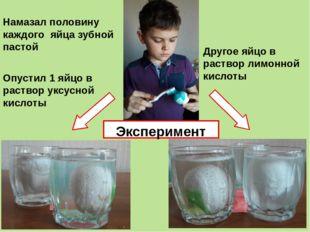 Намазал половину каждого яйца зубной пастой Опустил 1 яйцо в раствор уксусной