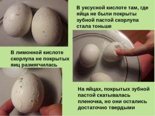 На яйцах, покрытых зубной пастой скатывалась пленочка, но они остались достат