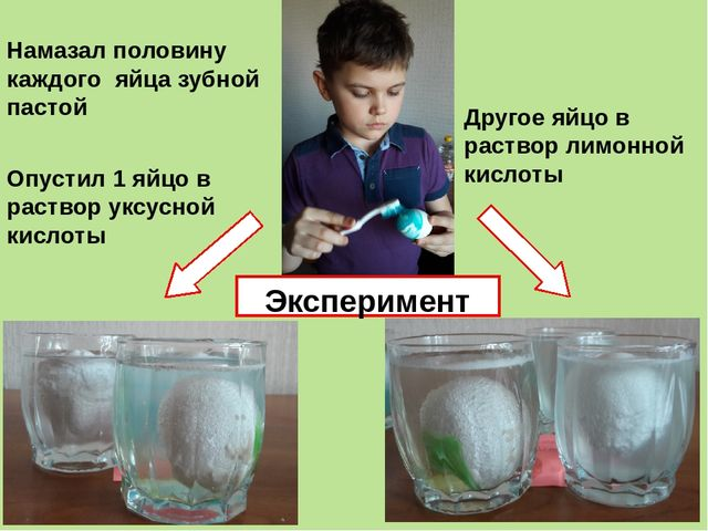 Намазал половину каждого яйца зубной пастой Опустил 1 яйцо в раствор уксусной...