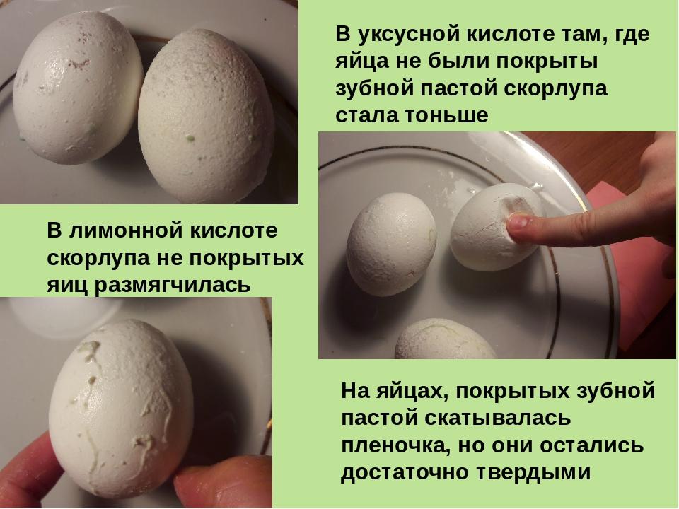 На яйцах, покрытых зубной пастой скатывалась пленочка, но они остались достат...