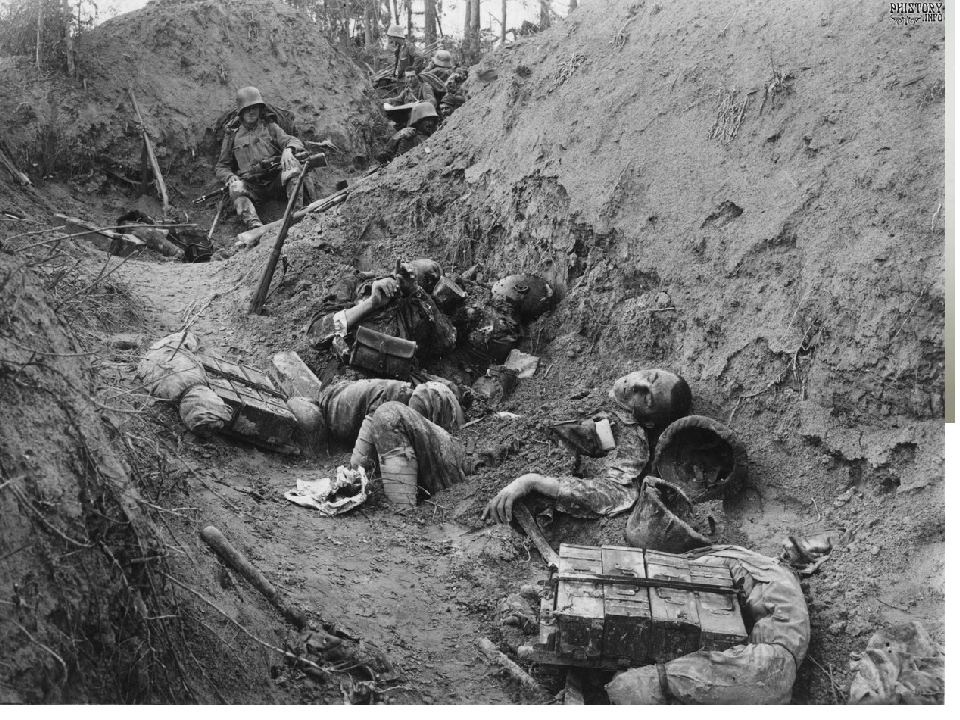 the history and effects of world war i World war i killed more people--more than 9 million soldiers, sailors, and flyers and another 5 million civilians--involved more countries--28--and cost more money--$186 billion in direct costs and another $151 billion in indirect costs--than any previous war in history it was the first war to use airplanes.