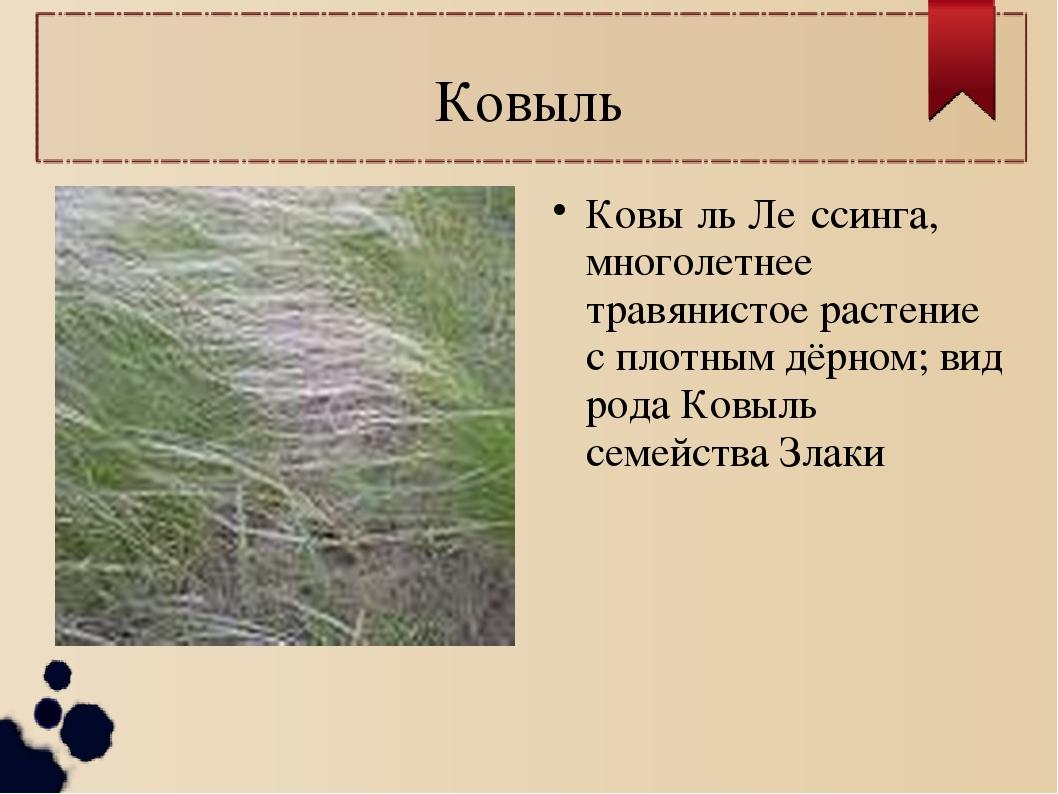 Ковыль Ковы́ль Ле́ссинга, многолетнее травянистое растение с плотным дёрном;...