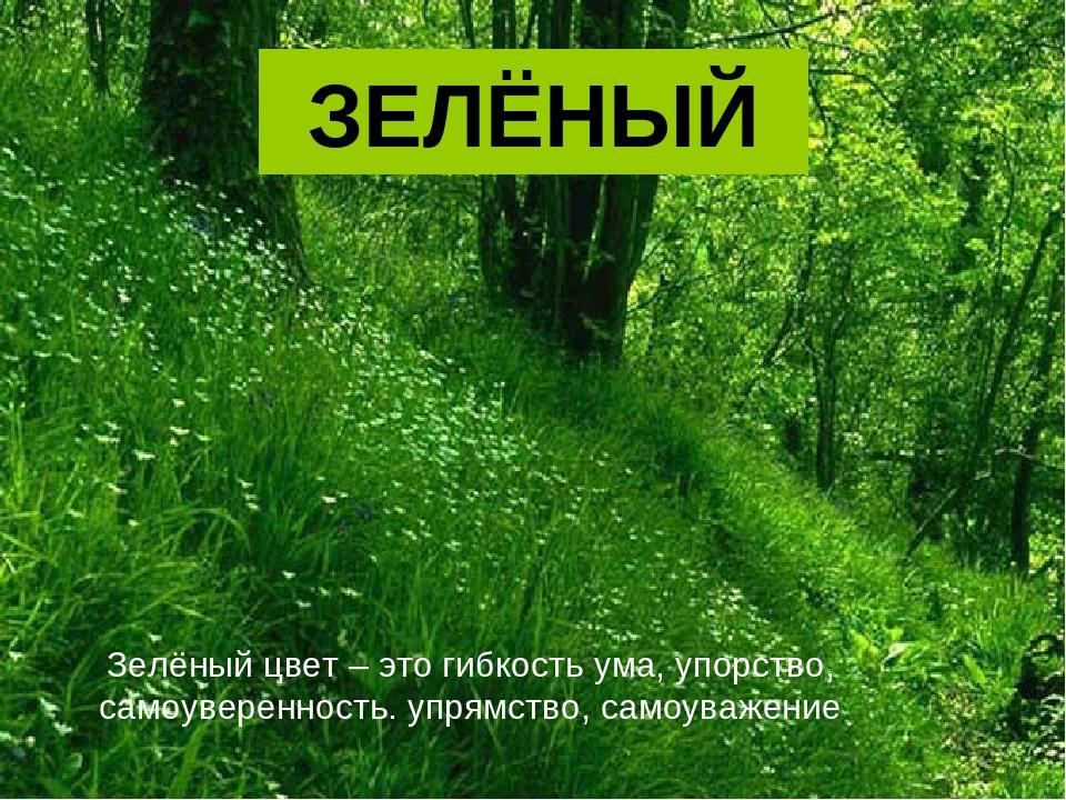 ЗЕЛЁНЫЙ Зелёный цвет – это гибкость ума, упорство, самоуверенность. упрямство...