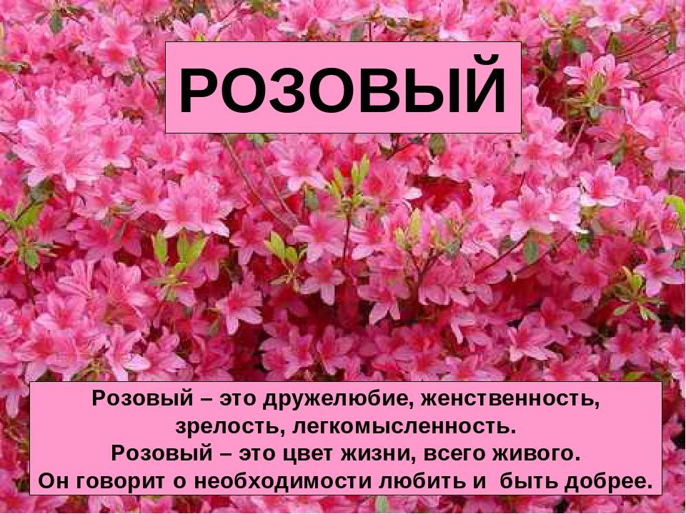 РОЗОВЫЙ Розовый – это дружелюбие, женственность, зрелость, легкомысленность....
