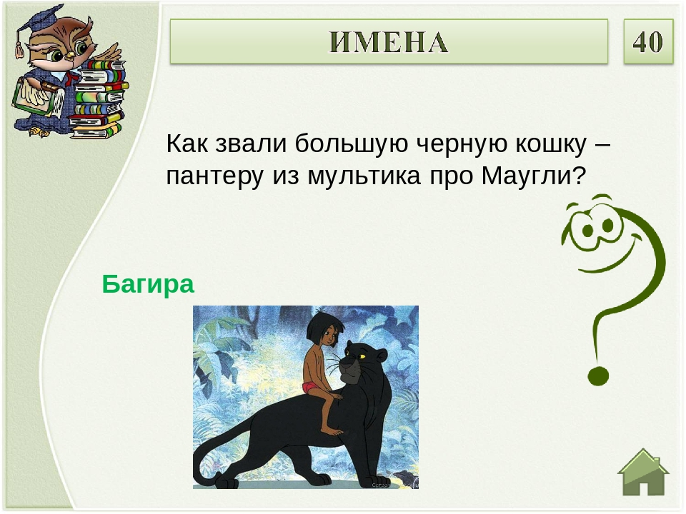 Багира Как звали большую черную кошку – пантеру из мультика про Маугли?