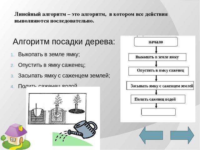 Презентация по информатике на тему типы алгоритмов (6 класс)