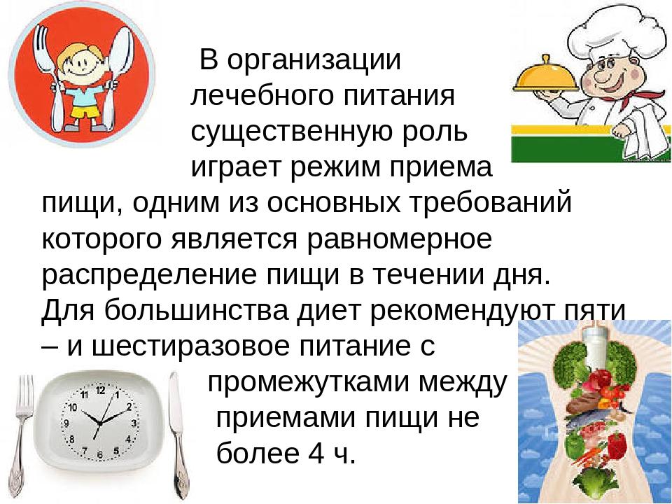 В организации лечебного питания существенную роль играет режим приема пищи,...