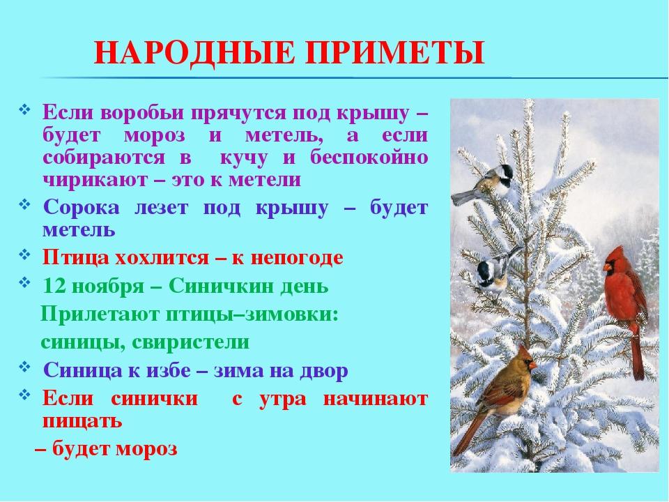 серый народные приметы и пословицы зимы в картинках качестве инструмента для