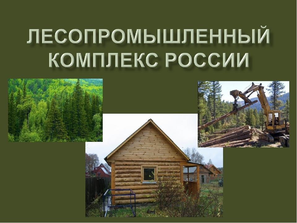 торт лесная промышленность россии презентация держит рукав