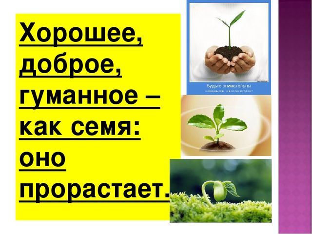 Хорошее, доброе, гуманное – как семя: оно прорастает.