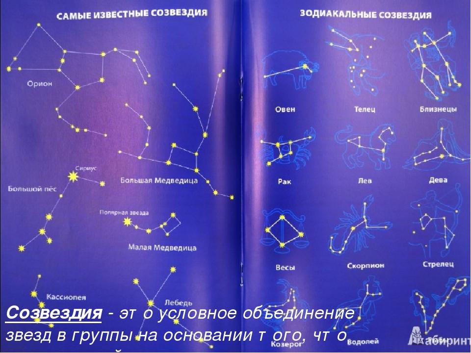 название звезд с картинками телешоу которое пришла