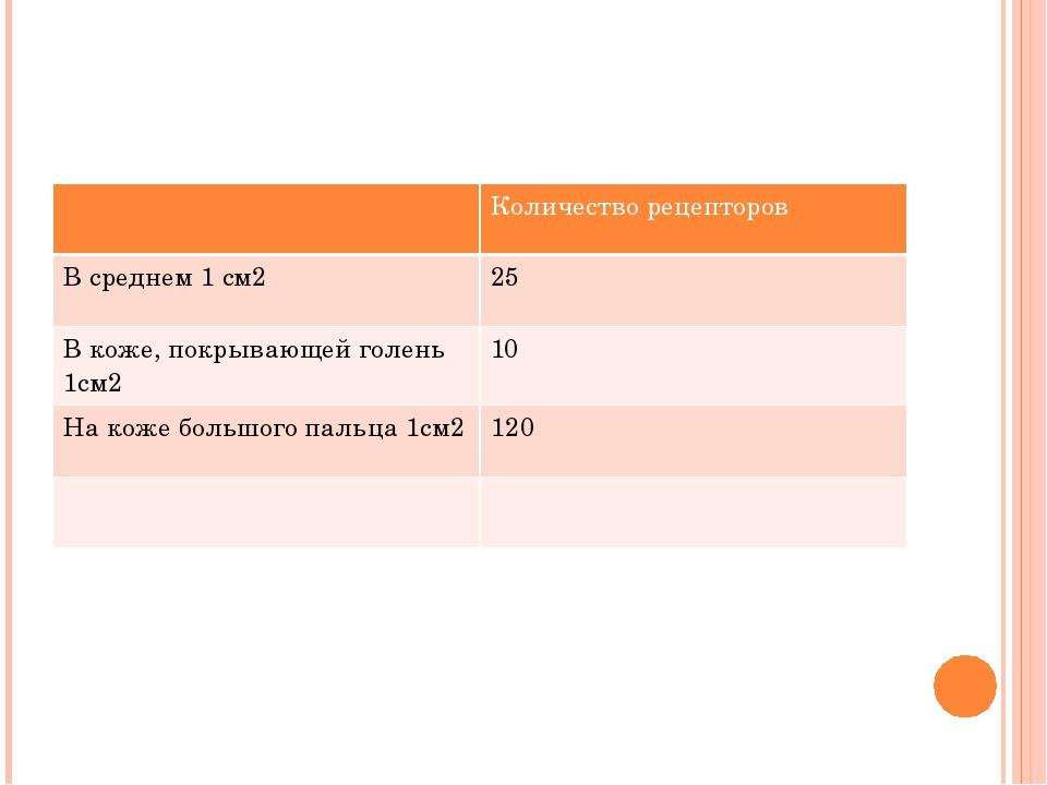 Количество рецепторов В среднем 1 см2 25 В коже, покрывающей голень 1см2 10...