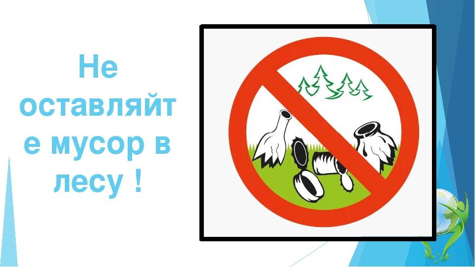 Не будем мусорить в лесу картинка