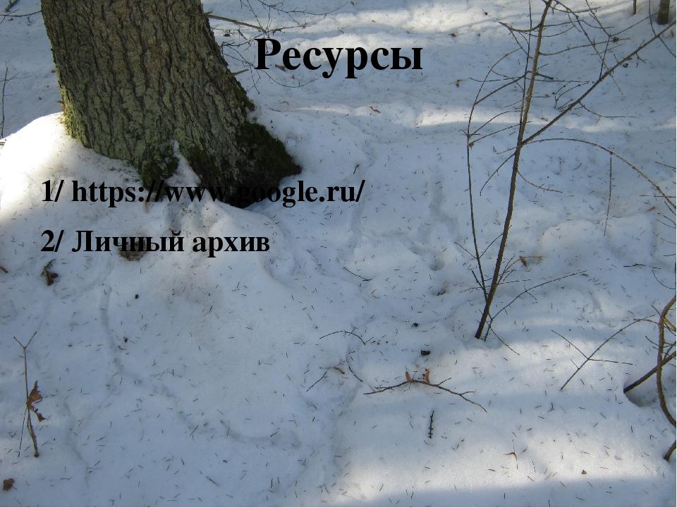 Ресурсы 1/ https://www.google.ru/ 2/ Личный архив
