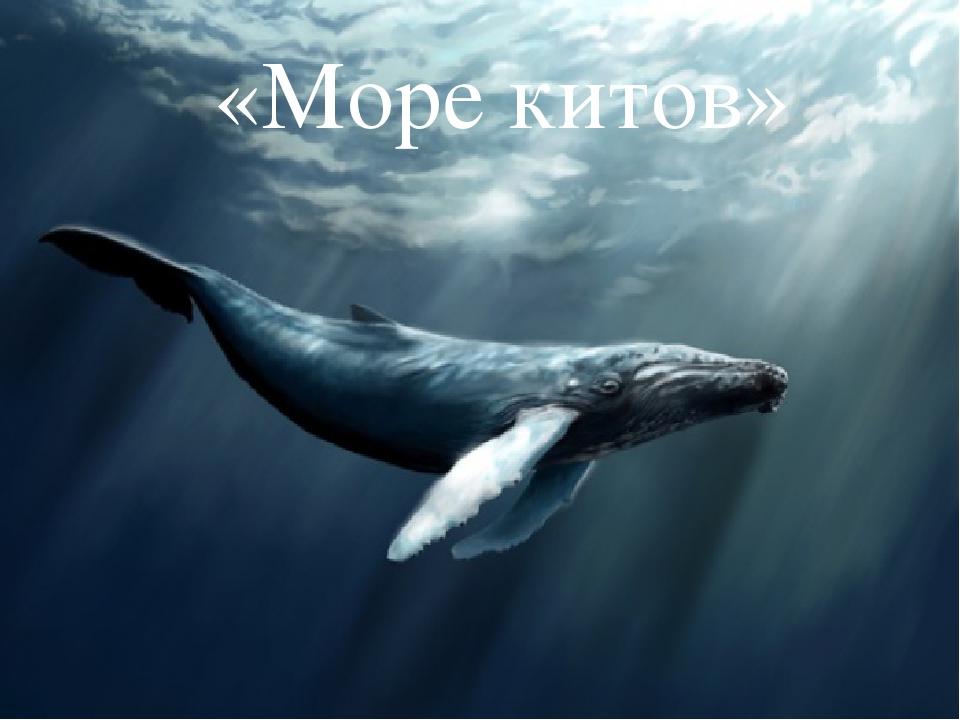 «Море китов»