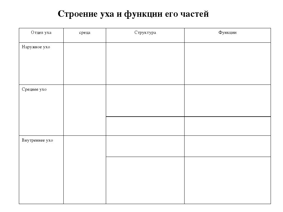 Строение уха и функции его частей Отдел ухасредаСтруктураФункции Наружное...