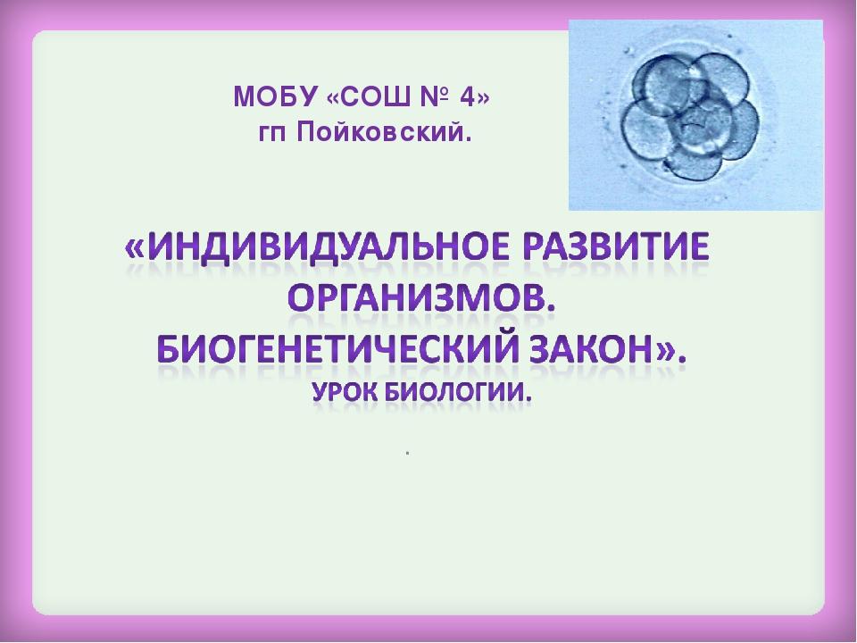 . МОБУ «СОШ № 4» гп Пойковский.