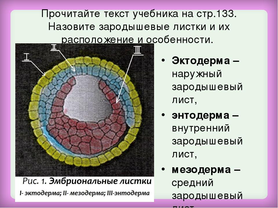 Прочитайте текст учебника на стр.133. Назовите зародышевые листки и их распол...