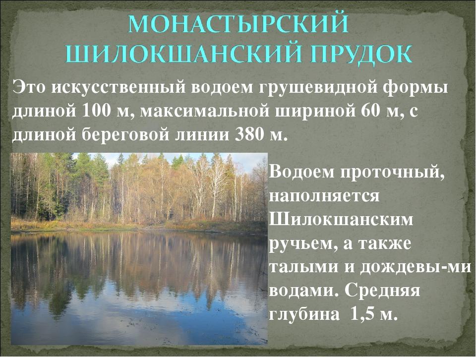 Водоем проточный, наполняется Шилокшанским ручьем, а также талыми и дождевы-м...