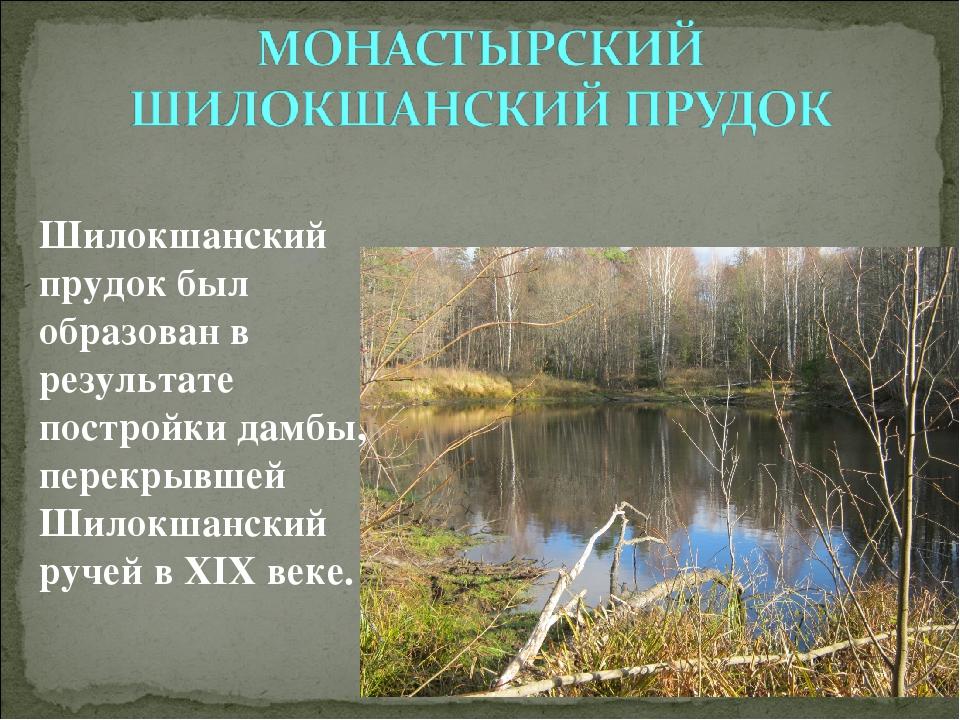 Шилокшанский прудок был образован в результате постройки дамбы, перекрывшей Ш...