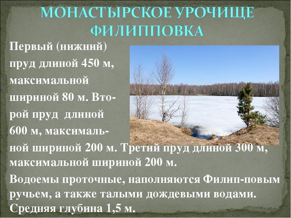 Первый (нижний) пруд длиной 450 м, максимальной шириной 80 м. Вто- рой п...