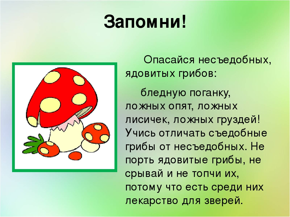 Ядовитые грибы картинка для презентации стишок