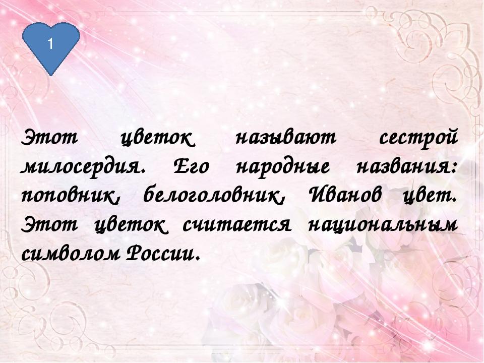 2 В народе этот цветок называют бобыльником, переполохом, звоновой травой. Хл...
