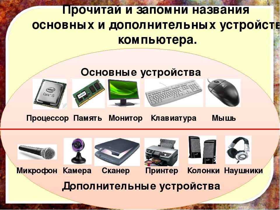 устройствами компьютера с дополнительными знакомство