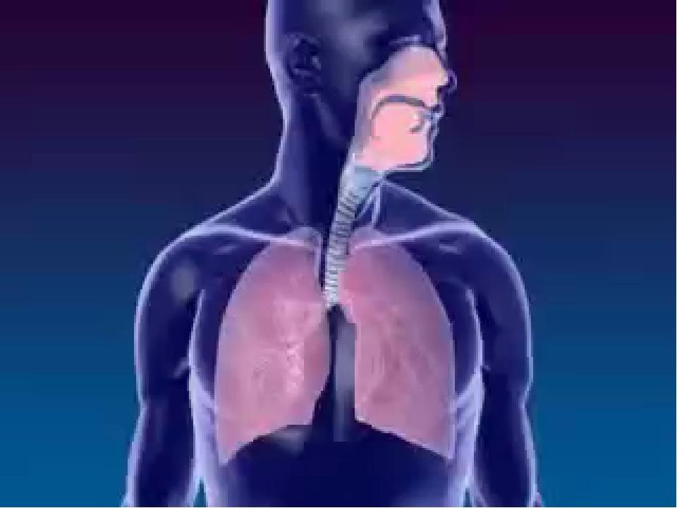 Гифка дыхание человека, день рождения