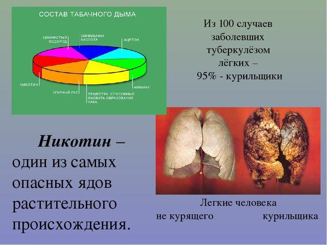 Никотин – один из самых опасных ядов растительного происхождения. Из 100 слу...