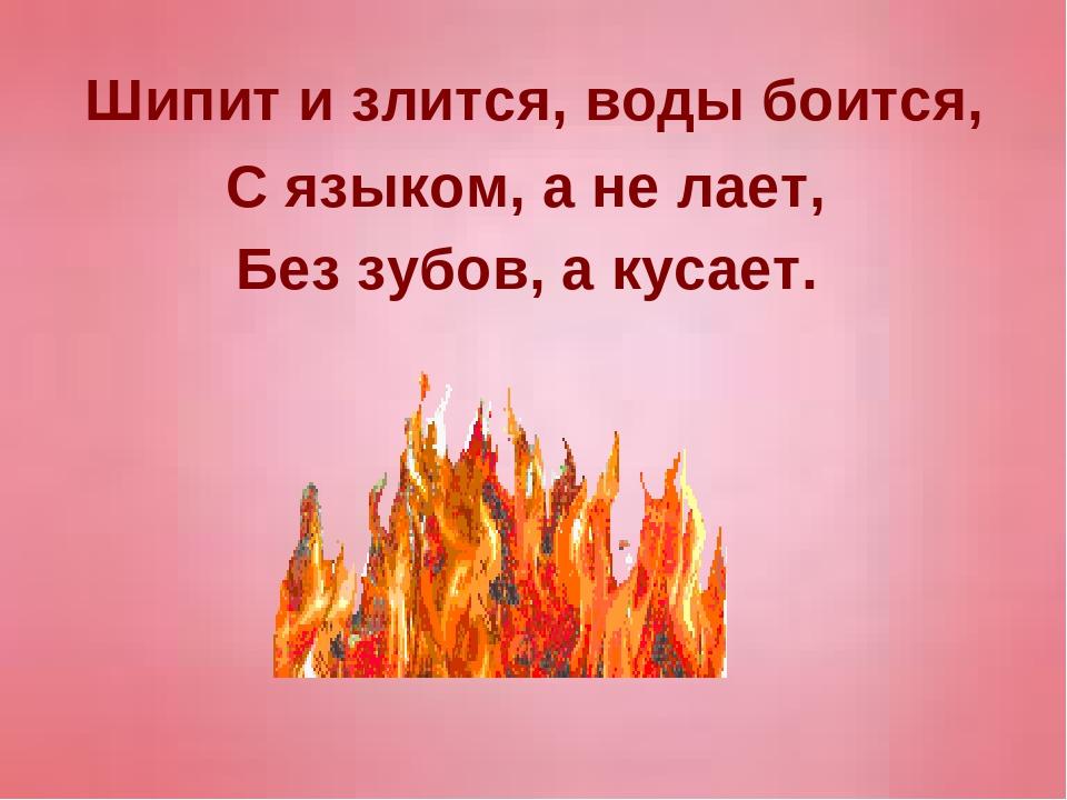 Шипит и злится, воды боится, С языком, а не лает, Без зубов, а кусает.