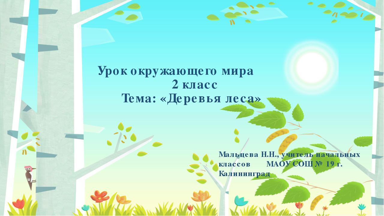 Урок окружающего мира 2 класс Тема: «Деревья леса» Мальцева Н.Н., учитель нач...