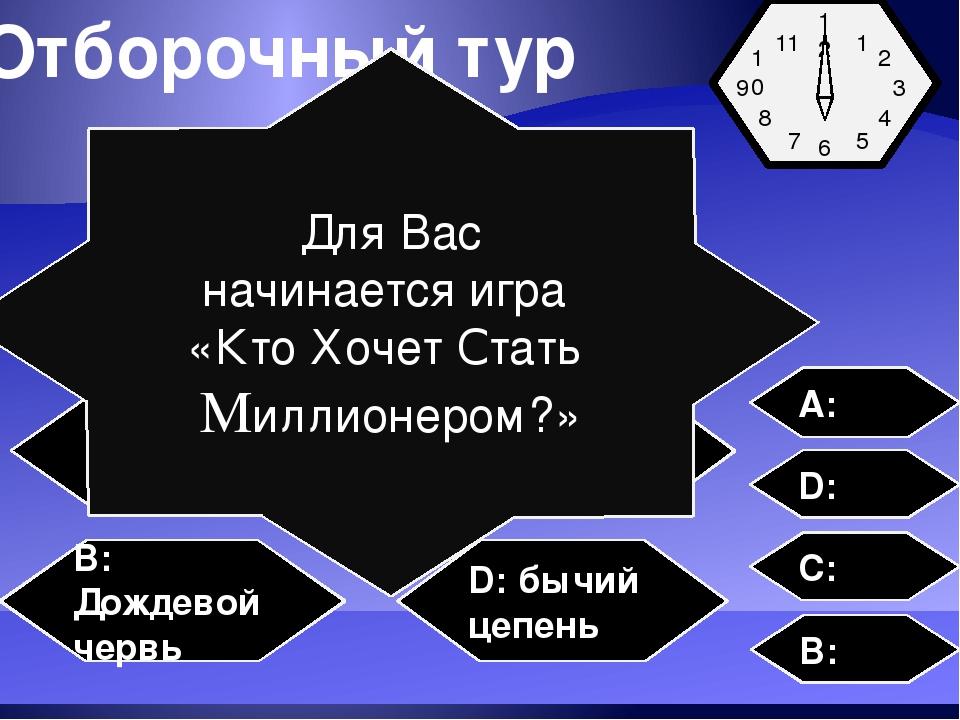 Отборочный тур Представитель круглых червей- A: аскарида C: пиявка B: Дождево...