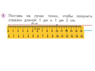 10 см 12 см