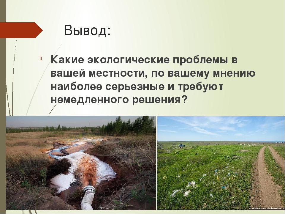 Вывод: Какие экологические проблемы в вашей местности, по вашему мнению наиб...