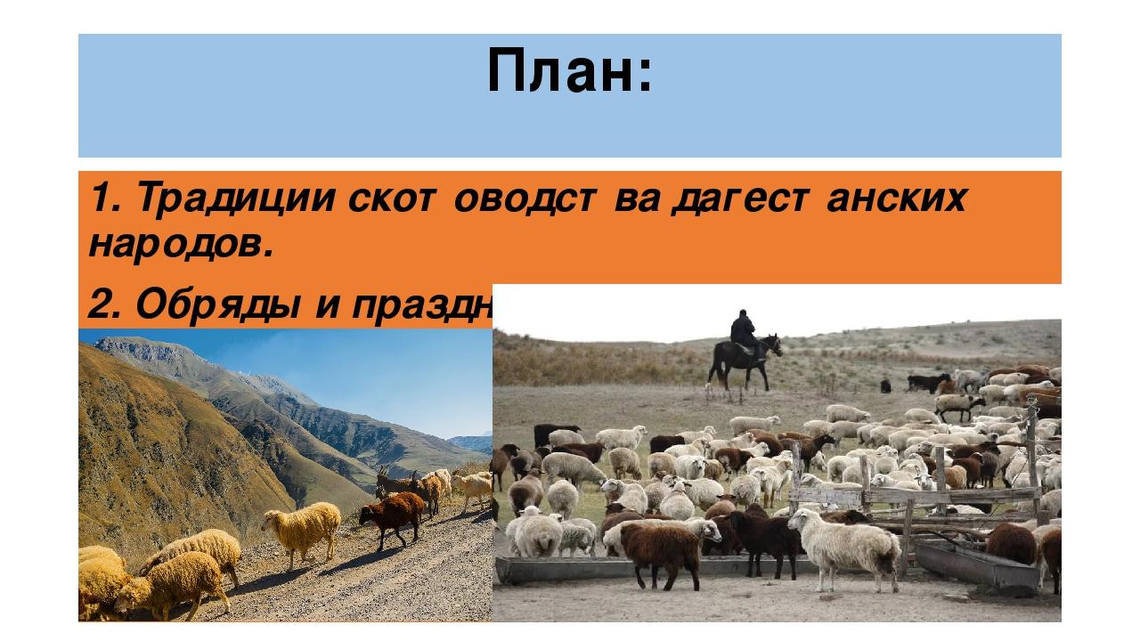 Скотоводство в дагестане доклад 3385