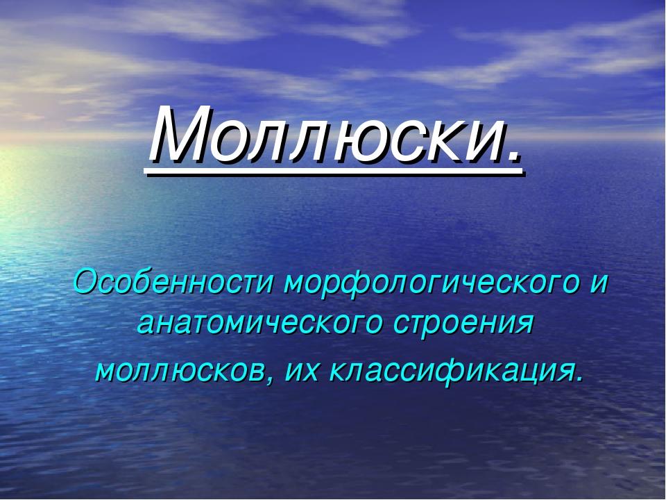 Моллюски. Особенности морфологического и анатомического строения моллюсков, и...