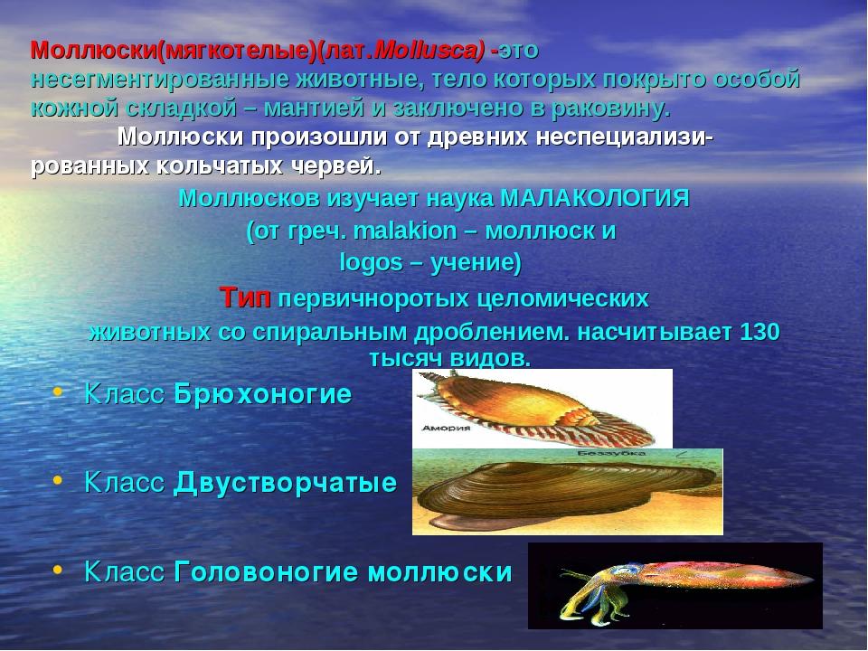 Моллюски(мягкотелые)(лат.Mollusca) -это  несегментированные животные, тело к...