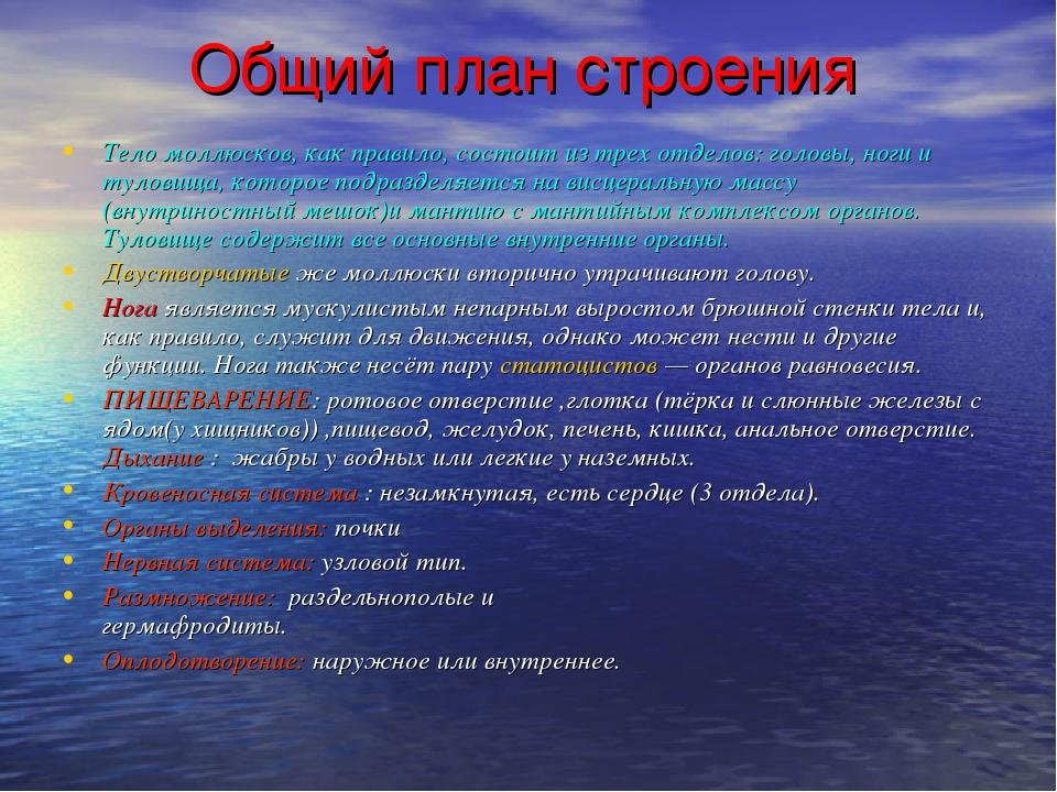 Общий план строения Тело моллюсков, как правило, состоит из трех отделов: го...