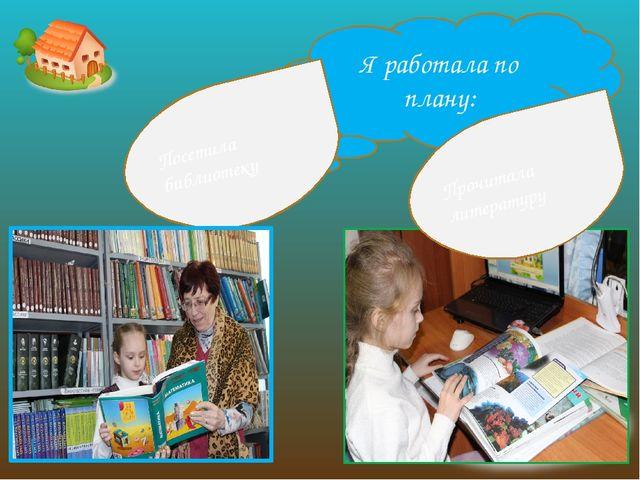 Я работала по плану: Посетила библиотеку Прочитала литературу