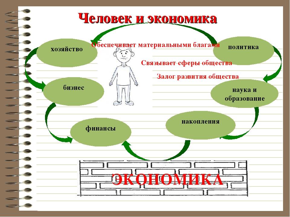 Человек и экономика хозяйство бизнес финансы накопления наука и образование п...