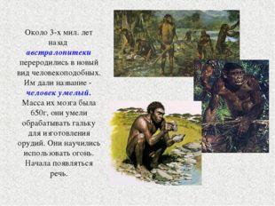 Около 3-х мил. лет назад австралопитеки переродились в новый вид человекоподо